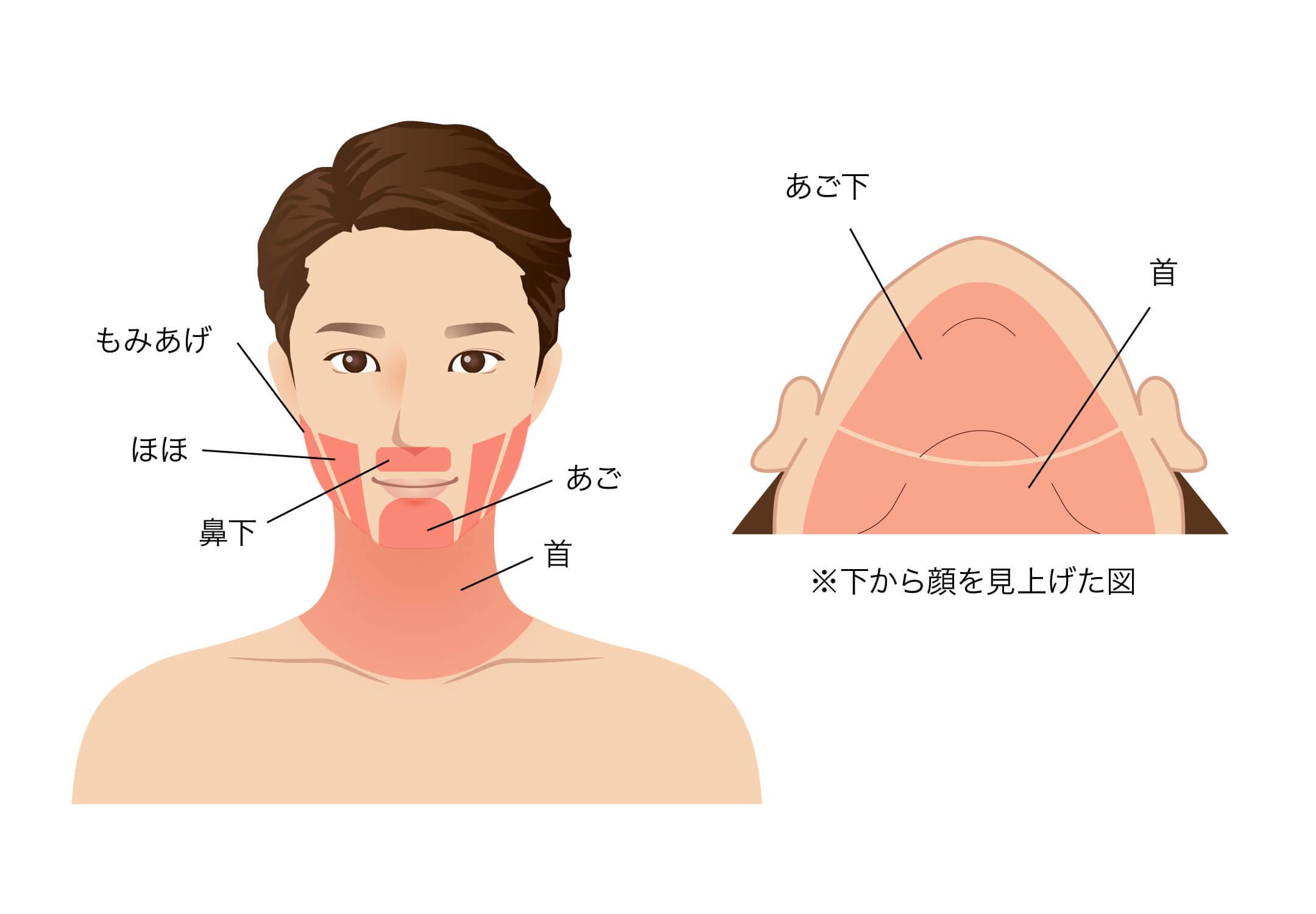 鼻下・あご・あご下・ほお・もみあげ・首・顔
